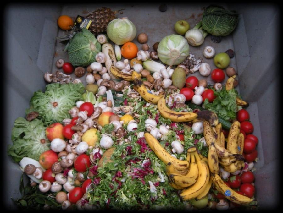 Proposta de Redução de Desperdício de Alimentos em Estabelecimentos Comerciais